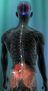 spinal cord stimulator Fort Myers